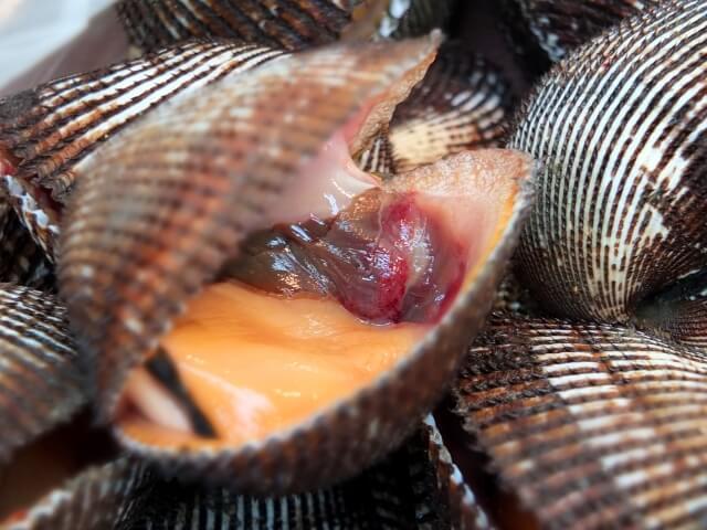 赤貝の栄養素