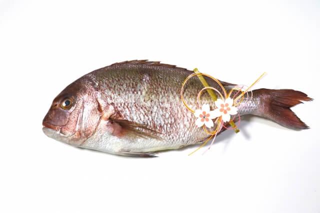 真鯛の栄養素